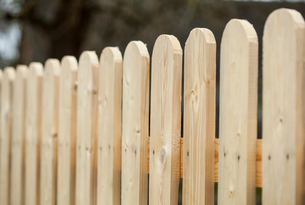 Maintain Your Wood Fence
